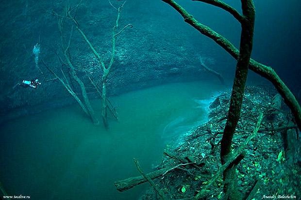 cenoteangelita02