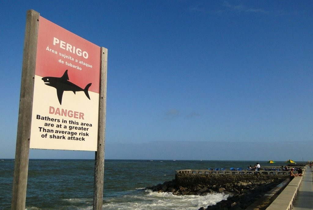 shark-warning-sign-brazil-adam-jones