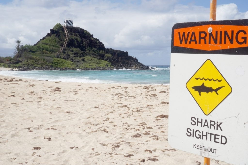 shark-warning-sign-pyramid-rock-beach-hawaii-photo-by-christine-cabalo