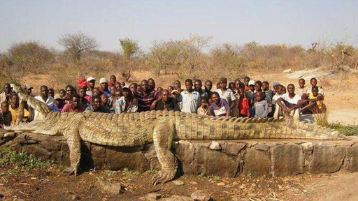 The Biggest Crocs Ever Recorded - Meet worlds largest crocodile caught philippines
