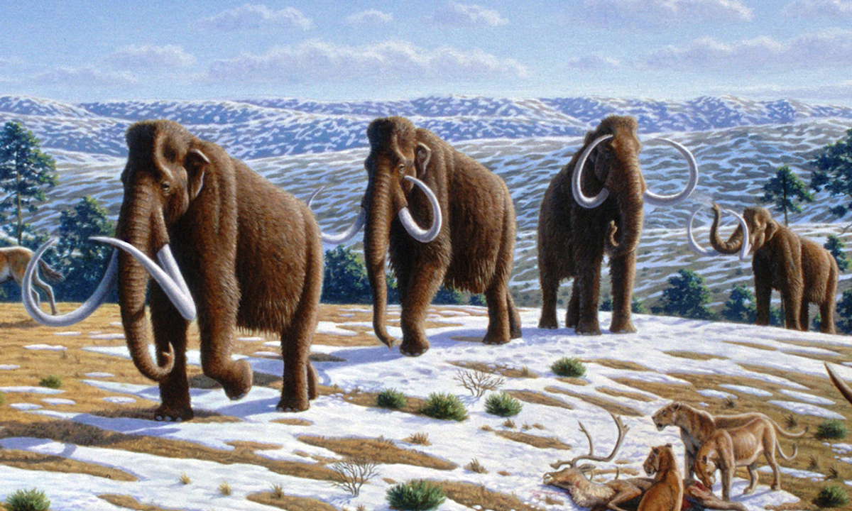 When did the last woolly mammoths die out?