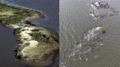 oil Dick chaney spill gulf
